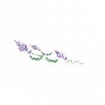 Ilustracion flores izquierda